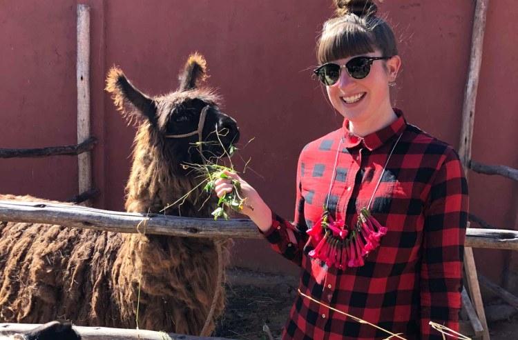 ellen jaworski feeding a llama