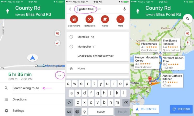 google maps search along route