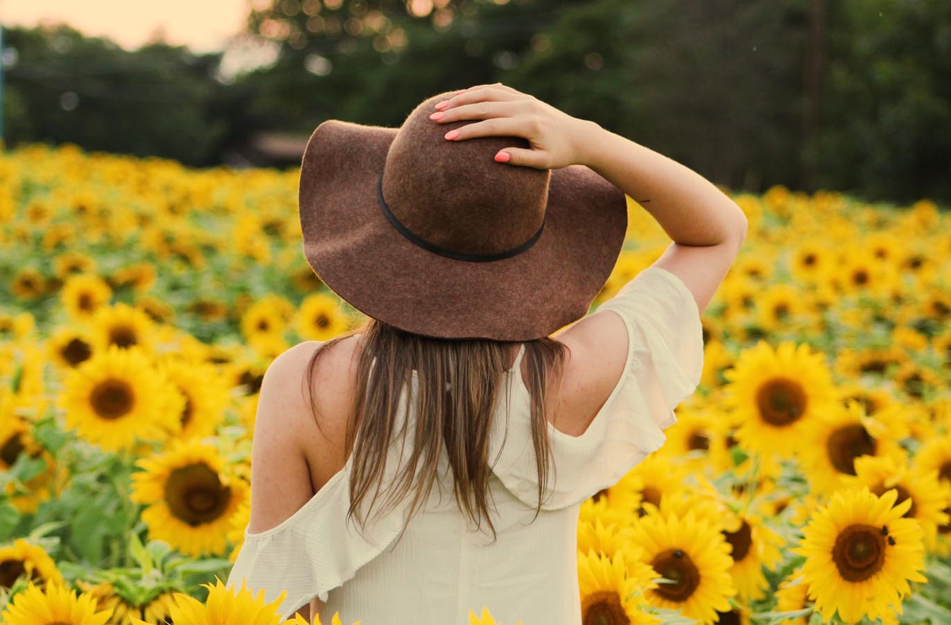 woman wearing white standing in a field of sunflowers